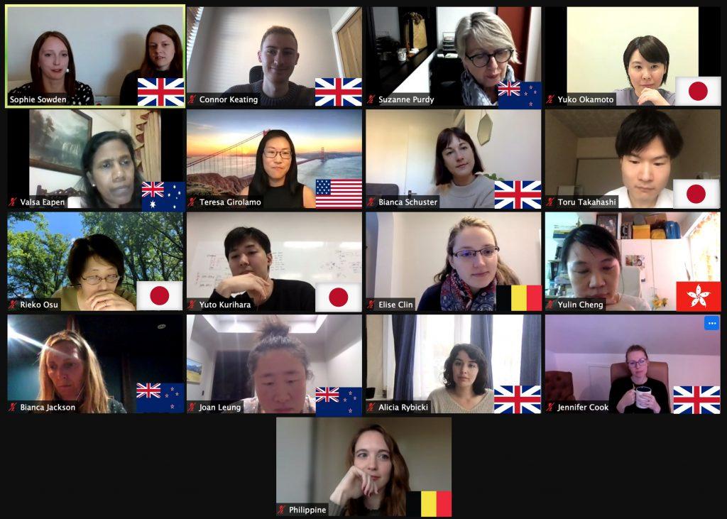 Virtual Meeting Screen Capture