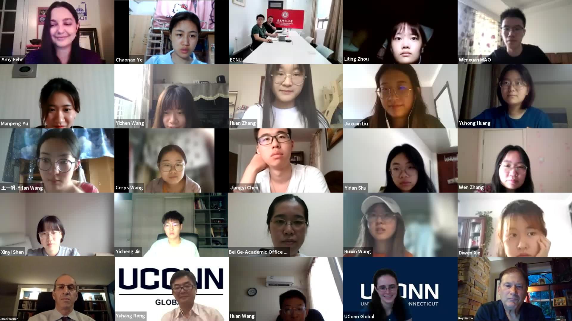 ECNU virtual program screenshot